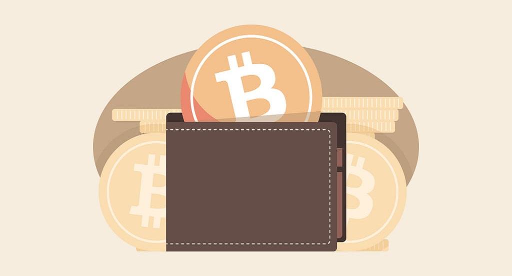 How Do I Set Up a Crypto Wallet?
