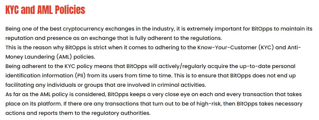 A Deeper Look Into BitOpps Trading Platform